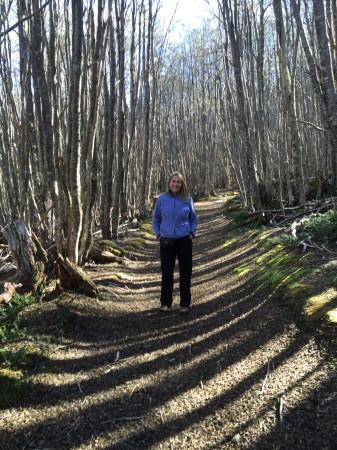 Taking a walk on Club Andino's trails